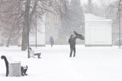 恶劣天气在城市:大雪和飞雪在冬天 库存照片