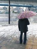 恶劣天气 免版税库存图片