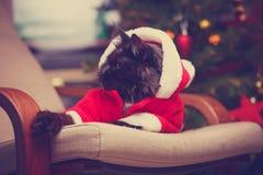 恶意嘘声欢乐画象在圣诞老人服装 免版税库存图片