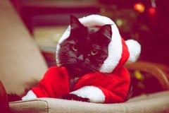 恶意嘘声欢乐画象在圣诞老人服装 库存图片
