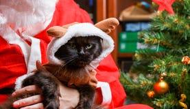 恶意嘘声的图片在鹿衣服的在圣诞老人` s武装 免版税图库摄影