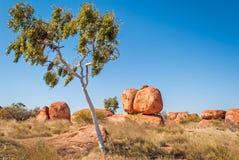 恶魔大理石,北方领土,澳大利亚 免版税库存图片