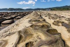 恶魔` s洗衣板海岸线和海滩在Aoshima海岛, Miyazak 免版税图库摄影