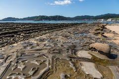 恶魔` s洗衣板海岸线在Aoshima海岛,宫崎,日本 免版税库存图片