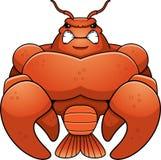 恼怒的动画片肌肉小龙虾 库存照片