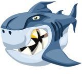 太坏鲨鱼 库存照片