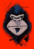 恼怒的大猩猩Portrail  免版税库存照片