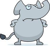恼怒的大象 免版税库存照片