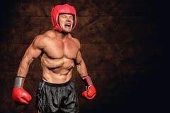 恼怒的拳击手的综合图象反对黑背景的 库存图片