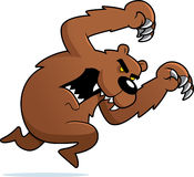 恼怒的攻击的熊 库存图片