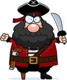 恼怒的海盗 库存图片