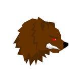 恼怒的熊 与咧嘴的积极的北美灰熊 狂放的野兽咆哮声 S 库存例证