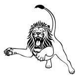恼怒的狮子攻击 免版税库存照片