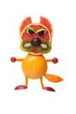 恼怒的猫由果子制成 免版税库存图片