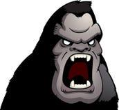 恼怒的猿 库存照片
