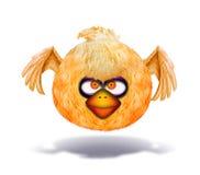 恼怒的看起来的橙色鸟 免版税库存照片