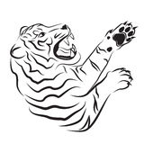 恼怒的老虎的例证 库存照片