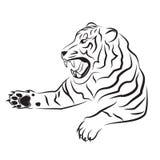 恼怒的老虎的例证 库存图片