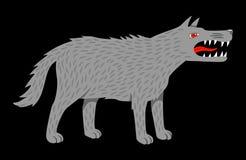 恼怒的邪恶的狼 免版税库存照片