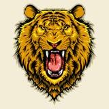 恼怒的顶头狮子 库存例证