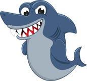恼怒的鲨鱼 免版税图库摄影