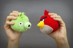 恼怒的鸟对 坏Piggies 免版税库存照片