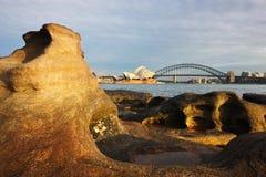 悉尼从Macquaries Point夫人的港口视图 库存照片