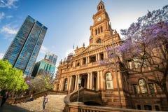 悉尼城镇厅在春天 库存图片