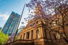 悉尼城镇厅,澳大利亚 免版税库存照片