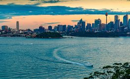 悉尼夜视图  库存照片