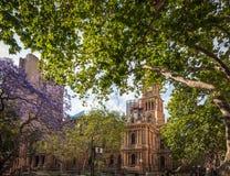 悉尼市政厅广场在春天 免版税库存照片