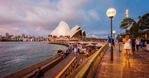 悉尼歌剧院和港口全景射击在晚上 免版税库存照片