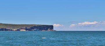 悉尼港口国家公园 免版税库存照片