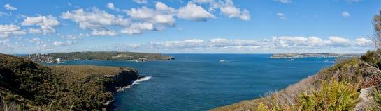 悉尼港口朝向全景 免版税库存照片