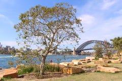 悉尼港桥 图库摄影