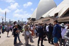 悉尼澳大利亚16/11/2018 -人群等待看苏克塞斯的公爵和公爵夫人的瞥见在悉尼歌剧院 免版税库存照片