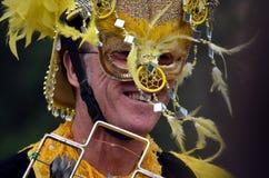 悉尼狂欢节 免版税库存图片
