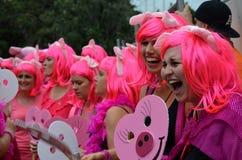 悉尼狂欢节 库存图片