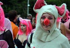 悉尼狂欢节 免版税图库摄影
