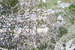 悉尼空中照片  库存照片