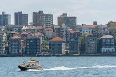 悉尼,澳大利亚- 2014年11月05日:悉尼企业结构 有黄色水出租汽车的港口 免版税库存图片
