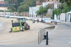 悉尼,澳大利亚- 2014年11月13日:清洁海滩沙子在悉尼,澳大利亚 Watsons海湾 免版税库存图片