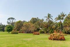 悉尼,澳大利亚- 2014年11月05日:皇家植物园在悉尼、澳大利亚有tourits人的和地方公园训练 免版税库存图片