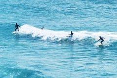 悉尼- 2015年10月:冲浪者在邦迪滩享用波浪 Bondi 库存照片