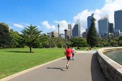 悉尼 库存图片