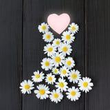 从您喜爱的收藏的时兴的花服 库存图片