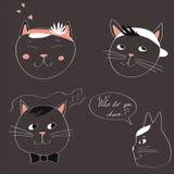 您在灰色背景选择与四只猫的图象的例证和文本 向量 免版税图库摄影