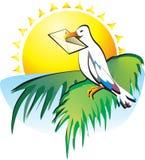 您收到了一封信 海鸥坐在a的一棵棕榈树 免版税库存图片