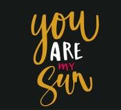 您是我的太阳 免版税库存图片