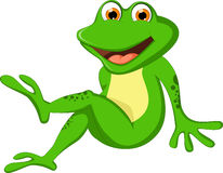 您的动画片青蛙设计 库存图片